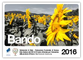 Bando 2016