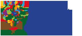 Logo Csv Vicenza